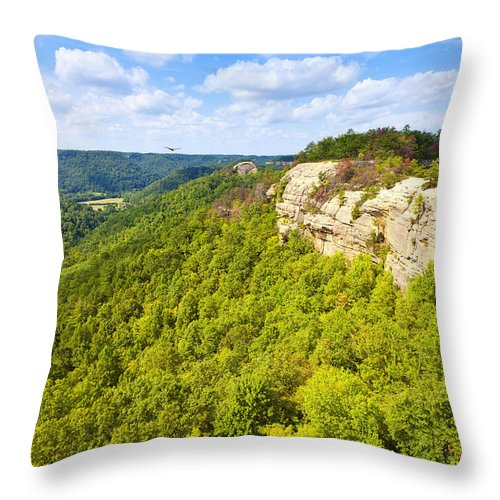Forest Throw Pillow featuring the photograph Ridge Top View by Alexey Stiop