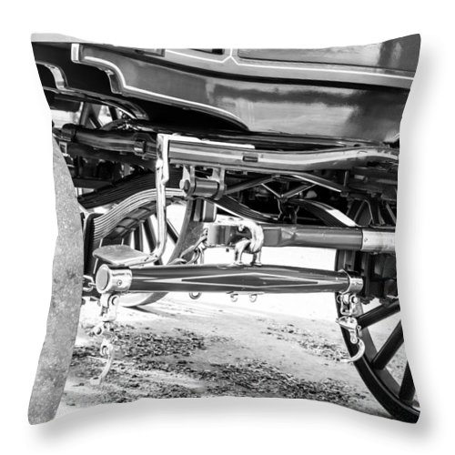Horse Throw Pillow featuring the photograph Riding Solo by Colleen Coccia