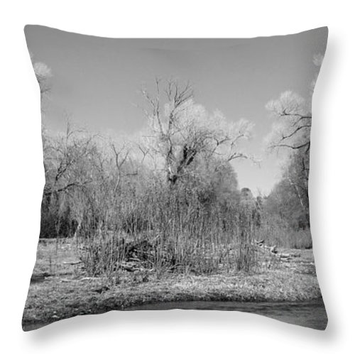Photography Throw Pillow featuring the photograph Rio Mimbres by Vicki Pelham