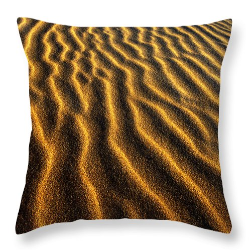 North America Throw Pillow featuring the photograph Ripples Oregon Dunes National Recreation Area by Dave Welling