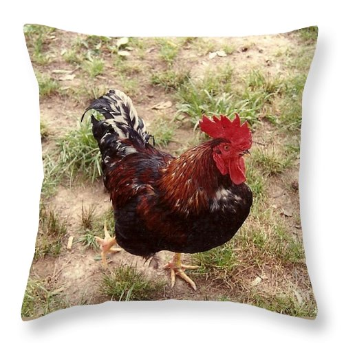 Brookhaven Mississippi Throw Pillow featuring the photograph Rise And Shine Cock A Doodle Do by Michael Hoard