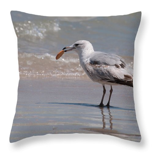 Seagull Throw Pillow featuring the photograph Ritz by Photos By Cassandra