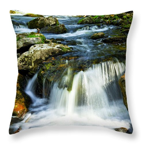 River Throw Pillow featuring the photograph River Flowing Through Woods by Elena Elisseeva