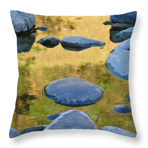 American River Throw Pillow featuring the photograph River Of Gold by Sherri Meyer