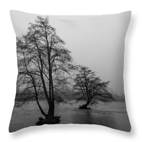 River Throw Pillow featuring the photograph River Trees And Fog by John Daly