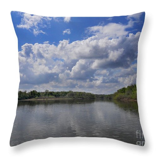 Cenic Tours Throw Pillow featuring the photograph River View by Skip Willits