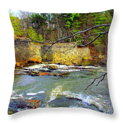 Royal River Throw Pillow featuring the photograph River Wall by Elizabeth Dow