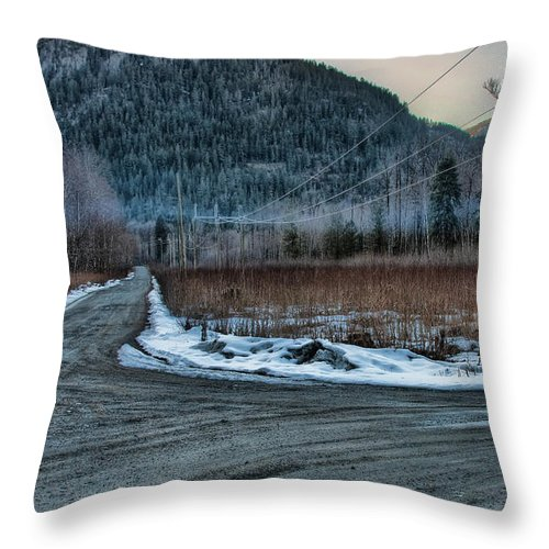 British Columbia Throw Pillow featuring the photograph Riverside Recreation Site by James Wheeler
