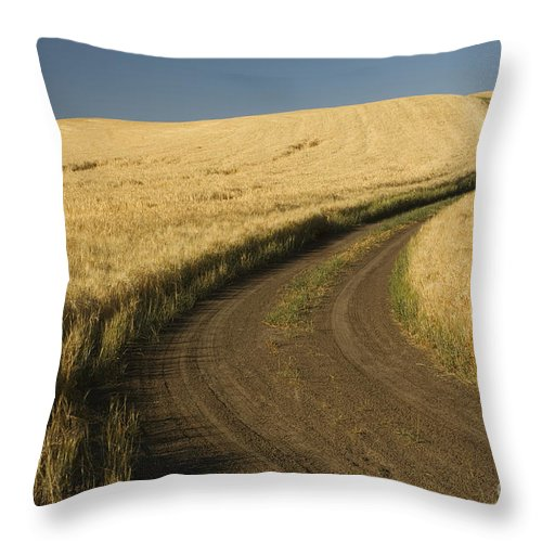 Road Throw Pillow featuring the photograph Road Through Wheat Field by John Shaw