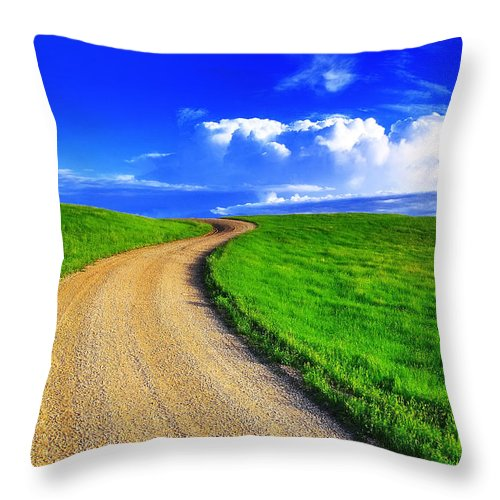 Road Throw Pillow featuring the photograph Road To Heaven by Kadek Susanto