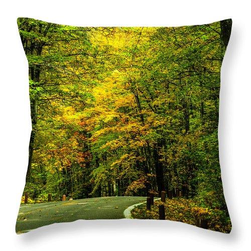 Fall Throw Pillow featuring the photograph Road Trip by Sheri Bartoszek