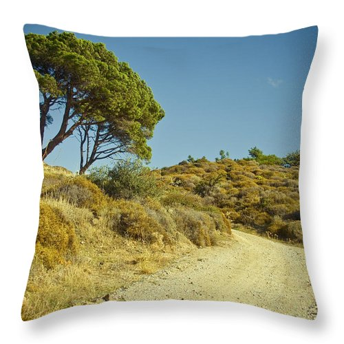 Olive Tree Throw Pillow featuring the photograph Road With Olive Trees by Raimond Klavins