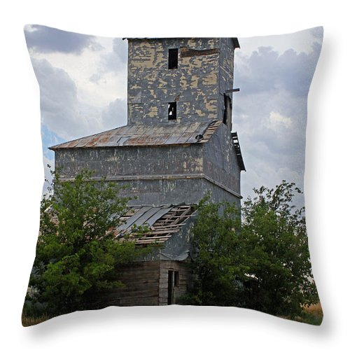 Texas Throw Pillow featuring the photograph Roadside Barn by Ashley M Conger