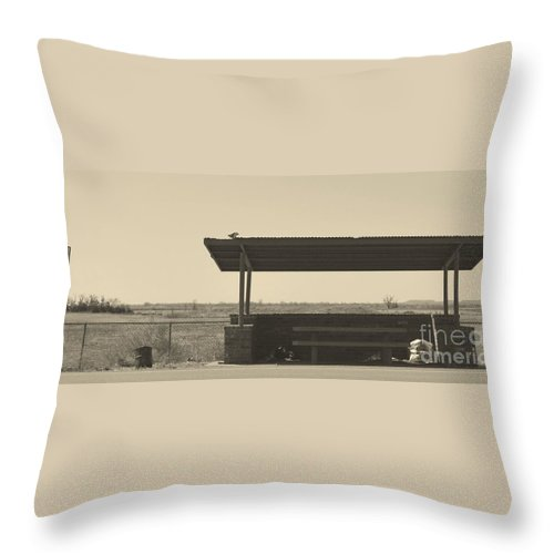 Throw Pillow featuring the photograph Roadside Rest by Derry Murphy