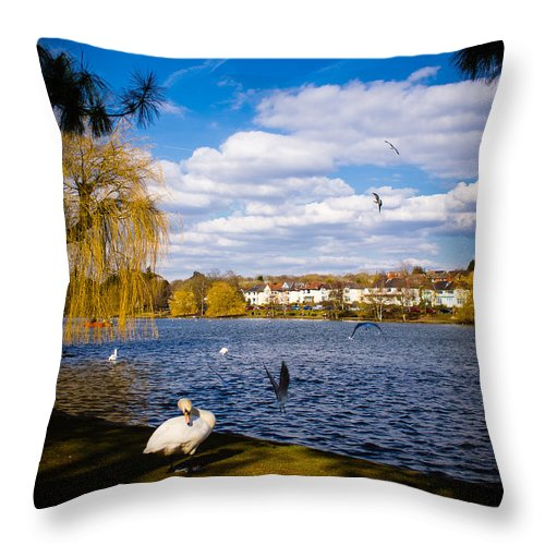 Beak Throw Pillow featuring the photograph Roath Park Lake by Mark Llewellyn