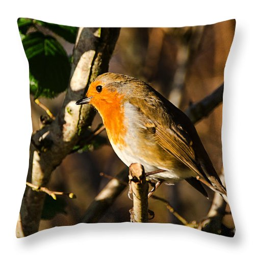 Robin Throw Pillow featuring the photograph Robin In The Hedgerow by Susie Peek