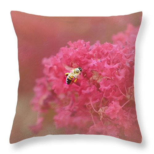 Pink Macro Flower Throw Pillow featuring the photograph Rockin Pink Bee by Peggy Franz