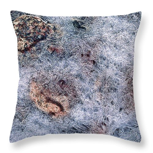 Rocks Throw Pillow featuring the photograph Rocks In Ice by Cathy Anderson