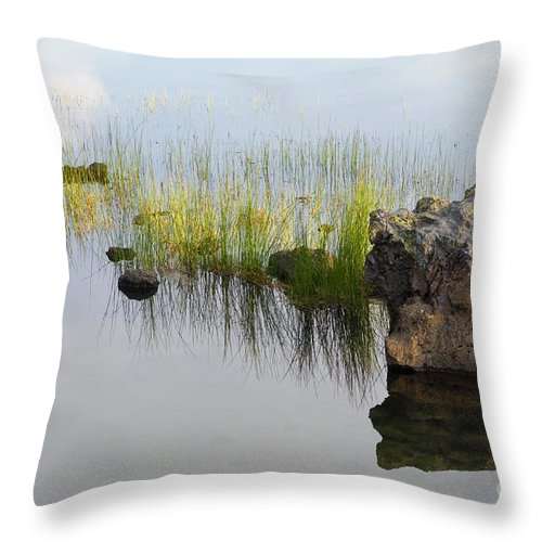 Reed Throw Pillow featuring the photograph Rocks In Lake by John Shaw