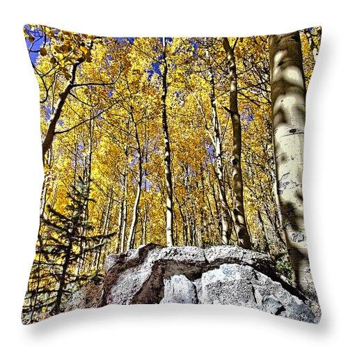 Rock Throw Pillow featuring the photograph Rocky Aspen by David Kehrli