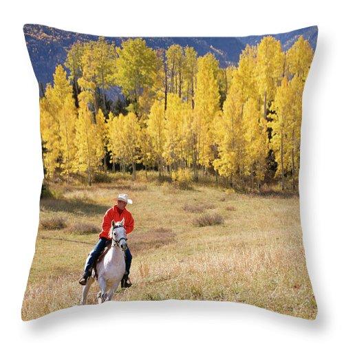 San Juan Mountains Throw Pillow featuring the photograph Rocky Mountain Cowboy by Amygdala imagery