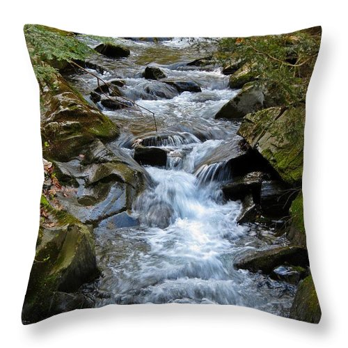 Stream Throw Pillow featuring the photograph Rocky Stream by MTBobbins Photography