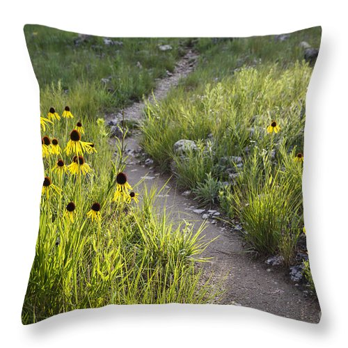 Lake Of The Ozarks Throw Pillow featuring the photograph Rocky Top Trail by Dennis Hedberg