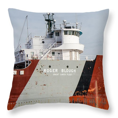 Roger Blough Throw Pillow featuring the photograph Roger Blough 3 by Susan McMenamin