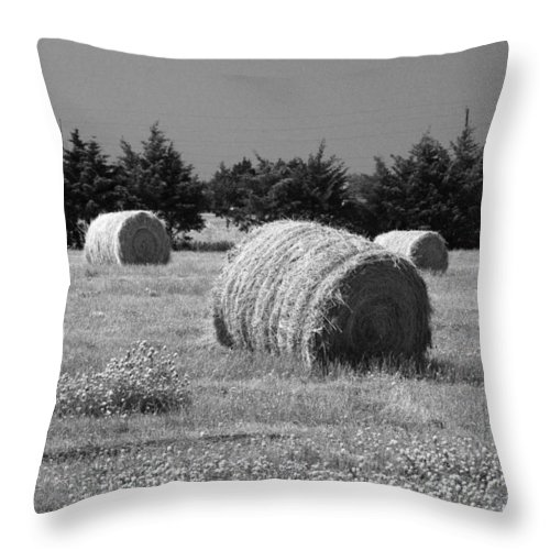 Rural Throw Pillow featuring the photograph Rolling In The Hay Bw by Robyn Stacey