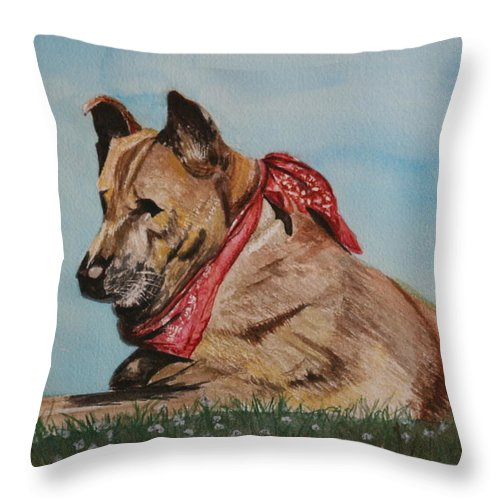 Dog Throw Pillow featuring the painting Romeo - A Healing Mix by Betty-Anne McDonald