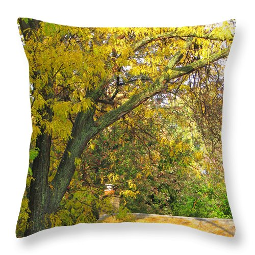 Autumn Throw Pillow featuring the photograph Rooftop Gold by Ann Horn
