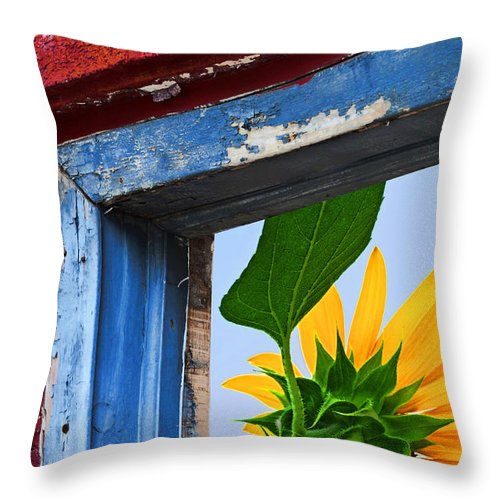 Sunflower Throw Pillow featuring the photograph Room With A View by Regina Geoghan