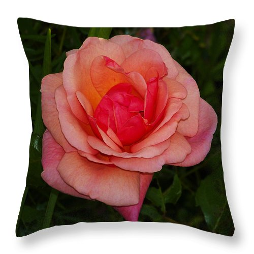Rose Throw Pillow featuring the photograph Rose 13 by Ingrid Smith-Johnsen