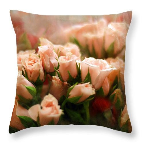 Flowers Throw Pillow featuring the photograph Rose Blush by Jessica Jenney