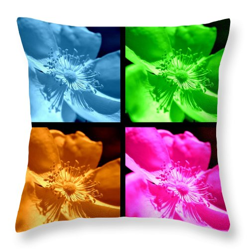 Rose Throw Pillow featuring the photograph Rose Collage by Kelly Nowak