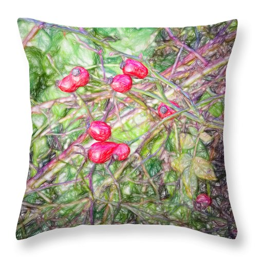 Artistic Throw Pillow featuring the photograph Rose Hip Imp by Leif Sohlman