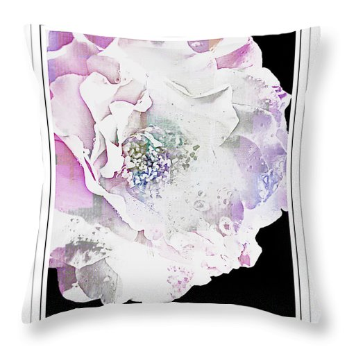 Nature Throw Pillow featuring the photograph Rose In Pastels by Debbie Portwood