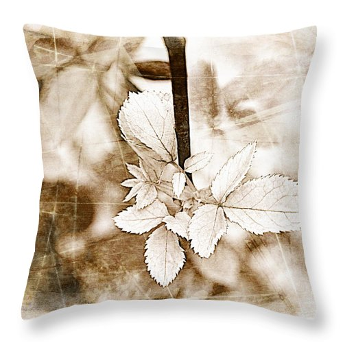 Nature Throw Pillow featuring the photograph Rose Leaf Photoart by Debbie Portwood