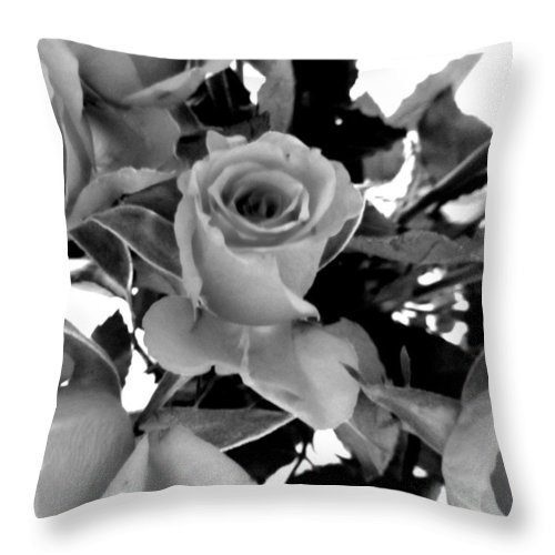 Roses Throw Pillow featuring the photograph Roses Black And White by Louise Grant