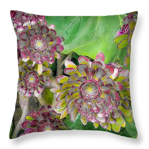 Rosette Throw Pillow featuring the photograph Rosetta by Will Wagner