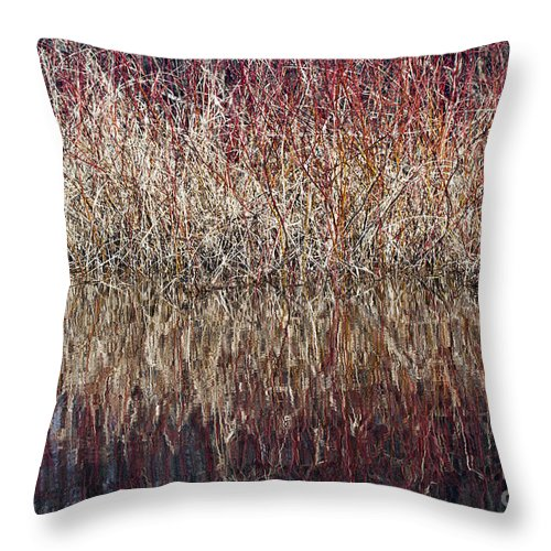 Abstract Throw Pillow featuring the photograph Rough by Glenn Gordon