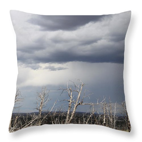 Rough Skys Throw Pillow featuring the photograph Rough Skys Over Colorado Plateau by Christiane Schulze Art And Photography