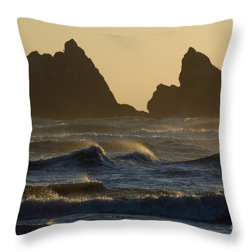 Landscape Throw Pillow featuring the photograph Rough Surf by John Shaw