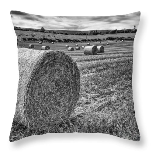 Bales Throw Pillow featuring the photograph Round Bales by Nigel R Bell