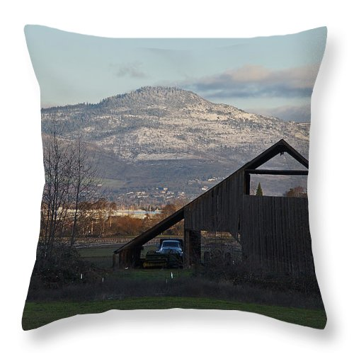 Barn Throw Pillow featuring the photograph Roxy Ann And The Dark Barn by Mick Anderson