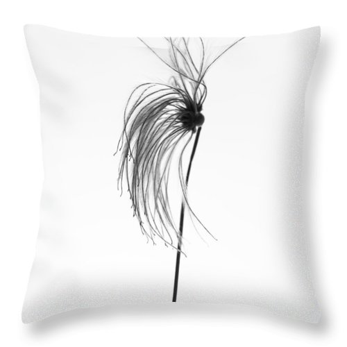 Flowers Throw Pillow featuring the photograph Rubber Factory by The Artist Project