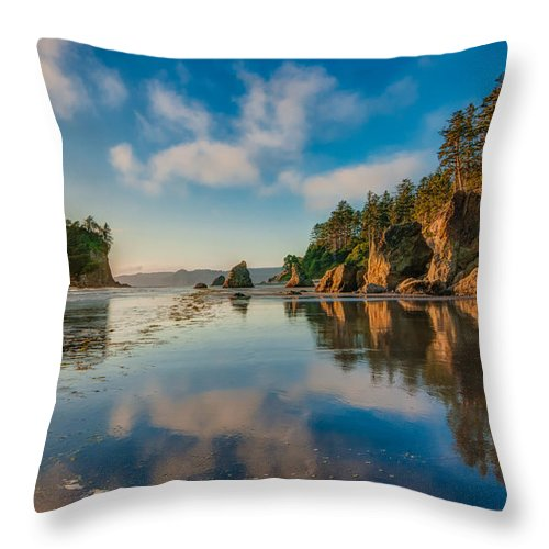 H2o Throw Pillow featuring the photograph Ruby Beach by Rich Leighton