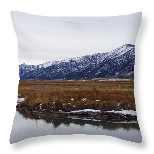 Landscape Throw Pillow featuring the photograph Ruby Marsh In Winter by Mike and Sharon Mathews