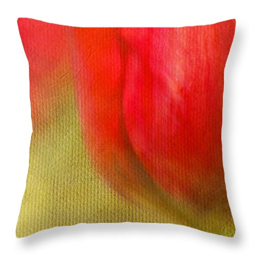 Bloom Throw Pillow featuring the photograph Ruby Slippers by Beve Brown-Clark Photography