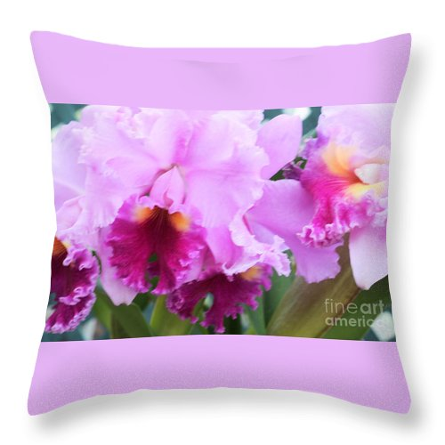 Orchid Throw Pillow featuring the photograph Ruffled Orchids by Kathleen Struckle